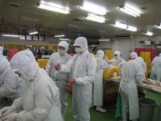食品工場1